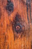 Ancient Tree Texture. Close up an ancient tree in Japan revealing its textures Stock Photo