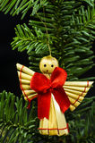 Close-up of angel on sprig Royalty Free Stock Photography