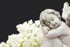 Close up of an angel and white spring flowers. On black background stock photography