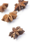 Close-up of anise on white background Royalty Free Stock Photography