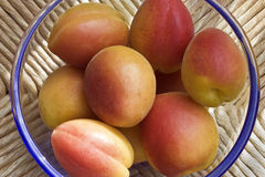 apricots in bowl Royalty Free Stock Images