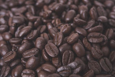 Arabica coffee beans for background. Close up arabica coffee beans for background Stock Photography