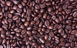 Close up arabica coffee beans. For background Royalty Free Stock Photos