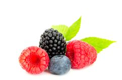 Studio shot mixed berries isolated on white. Close-up arrangement with mixed, assorted berries including blackberries, strawberry, blueberry and raspberries and Stock Images