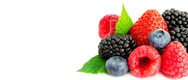 Studio shot mixed berries isolated on white. Close-up arrangement mixed, assorted berries including blackberries, strawberry, blueberry, raspberries and fresh Royalty Free Stock Images
