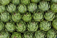 Close up artichoke Stock Photos
