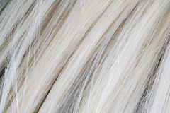 Close up of artificial blond wig hair. royalty free stock photos