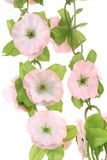 Close up of artificial flowers. Stock Photography