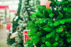 Close up artificial green Christmas trees for sale in the market, shop. Prepearing for Christmas eve, new year party. Selective fo. Cus, copy space royalty free stock image