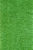 Close up artificial green grass leaves use as nauture and multip Stock Photography