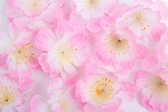Close up of artificial pink flowers Royalty Free Stock Photo
