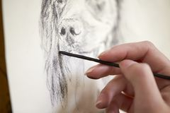 Close Up Of Artist Sitting At Easel Drawing Picture Of Dog In Charcoal royalty free stock photos