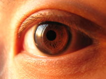 Close-up of asian eye. Eye closeup in dark brown. reflection of sky Stock Images