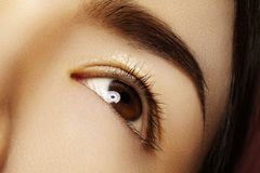 Close-up asian eye with clean makeup. Perfect shape eyebrows. Cosmetics and make-up. Care about eyes royalty free stock image