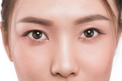 Close up of asian eye woman eyebrow eyes lashes.  Royalty Free Stock Photo