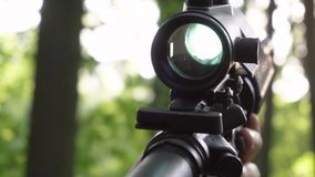 Close up of assault rifle, machine gun with red dot reflex sigh aiming at sunny day in the forest. Close up of assault rifle, machine gun with red dot reflex stock footage
