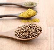 Close up of assortment spices in wooden spoons on wooden background Stock Photography