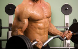 Close-up of an athletic man lifting weights. Close-up of an anonymous athletic man lifting weights Royalty Free Stock Photography