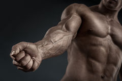 Close-up of athletic muscular arm and torso Royalty Free Stock Photo