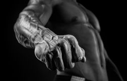 Close-up of athletic muscular arm and torso. Handsome muscular bodybuilder demonstrates his fist and vein, blood vessels. Studio shot on black background Stock Images