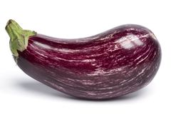 Close up of an Aubergine,eggplant stock photography