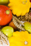 Close up of an autumn harvest Stock Photo
