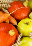 Close up of autumn harvest Stock Photos