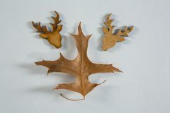 Close up of autumn leaf with wooden reindeer head. On white table Royalty Free Stock Images