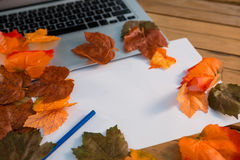 Close up of autumn leaves with paper by laptop Stock Photography
