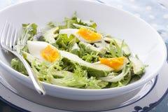 Close up of avocado salad Royalty Free Stock Photography