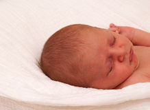 Close up of Baby Royalty Free Stock Photos