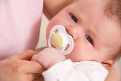 Close Up Of Baby Boy With Dummy Holding Mothers Ha Royalty Free Stock Photography