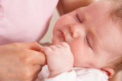 Close Up Of Baby Boy Holding Mothers Hand Royalty Free Stock Images