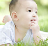 Close -up of a baby. A Chinese baby on grass is eating fingers outdoor Stock Photography