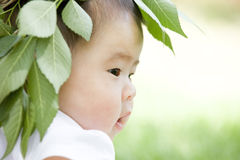 Close-up of a baby. A Chinese baby is outdoor with a branch hat on head Stock Photos