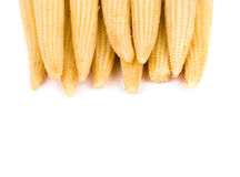 Close up of baby corn. Royalty Free Stock Photo
