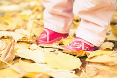 Close-up baby dressed in shoes outdoor at autumn park Royalty Free Stock Images
