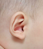 Close up  baby ear Royalty Free Stock Photos