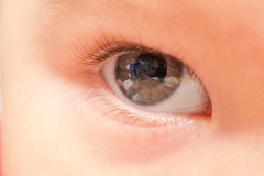Close up of baby eye. Close up of right baby eye royalty free stock photos