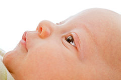 Close up on baby face Stock Photo