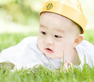 Close-up of a baby on grass Royalty Free Stock Photos