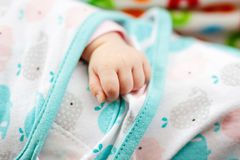 Close up of baby hand. Small fingers of newborn baby girl Royalty Free Stock Images