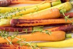 Close-up of Baby Rainbow Carrots Stock Photos
