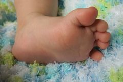 Close-up of Baby`s Foot on a Blue and Green Blanket royalty free stock images