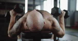 Close-up back view young Caucasian muscular man lying on bench lifting dumbbells in large gymnasium hall slow motion. Athletic male professional sportsman gets stock footage
