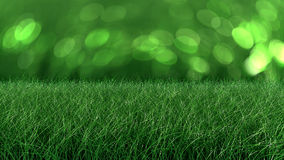 Close up backdrop of fresh thick grass Stock Images