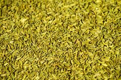 Close up background of fennel seeds. (foeniculum vulgare Stock Photos