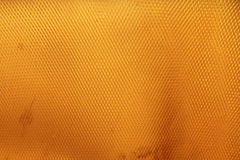 Para rubber dry sheet Stock Images