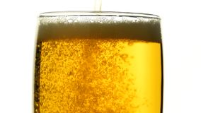 Close up pouring beer with bubbles in glass. Close up background of pouring beer with bubbles and foam in glass, low angle side view, slow motion stock video footage