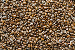 Close up background and texture of brown coffee beans Royalty Free Stock Image